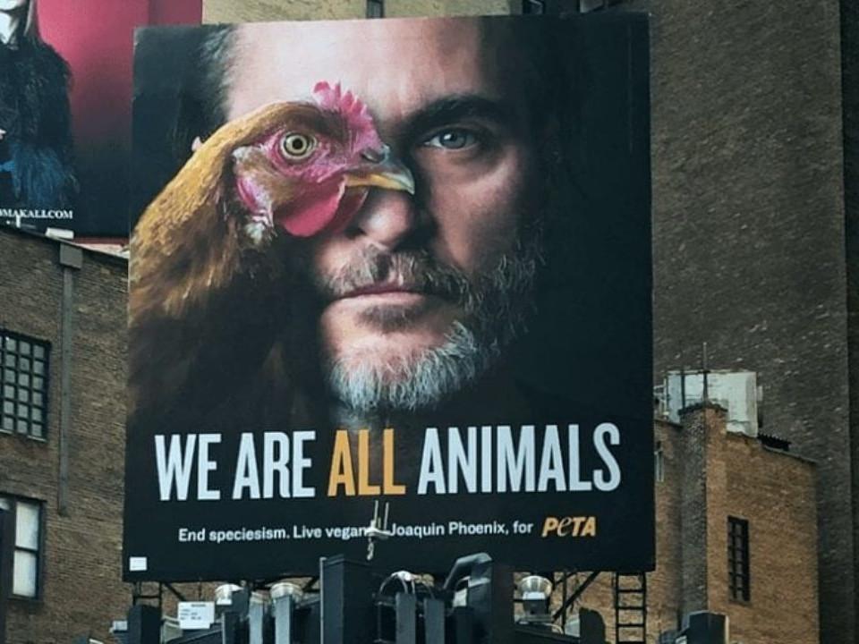 Joaquin Phoenix e la Peta: il video sui cani uccisi per produrre cuoio